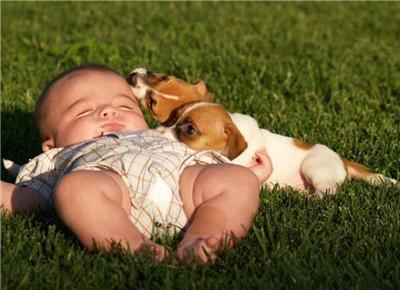 婴幼儿晒太阳需注意保护眼睛